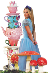 alice in wonderland tea party byron bay
