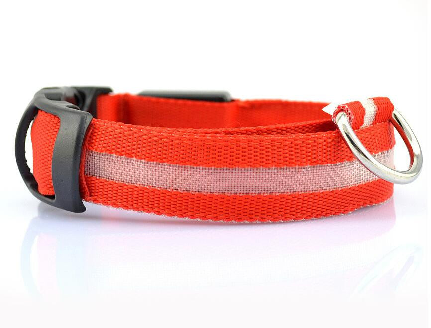 LED Dog Collar Flashing in Dark