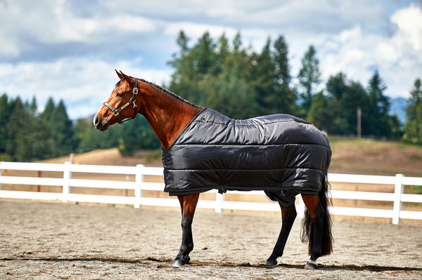 APH Show String Blanket (Medium Weight)