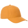 ca-32033-elevate-gold-ballcap