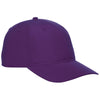 ca-32033-elevate-purple-ballcap