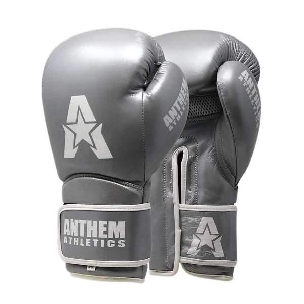 Stormbringer II Leather Boxing / Muay Thai Gloves