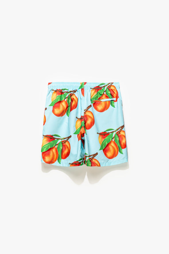 Stüssy Peaches Water Shorts - Rule of Next Apparel