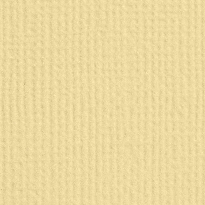 "Craft Perfect - Classic Card - Champagne - Weave Textured - 8.5"" x 11"" (10/PK) - tonicstudios"