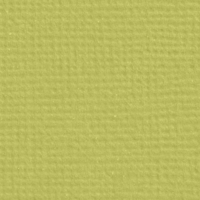 "Craft Perfect - Classic Card - Pistachio Green - Weave Textured - 8.5"" x 11"" (10/PK) - tonicstudios"