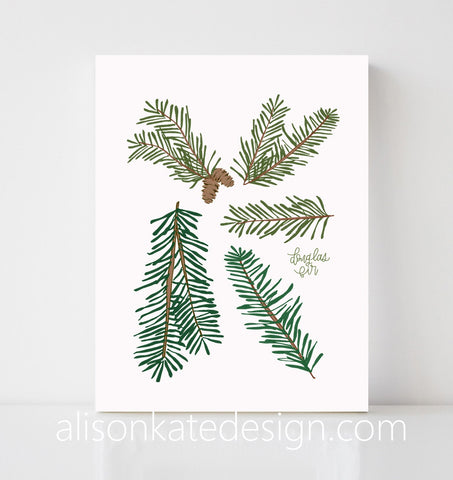 Douglas Fir - Holiday Art Print