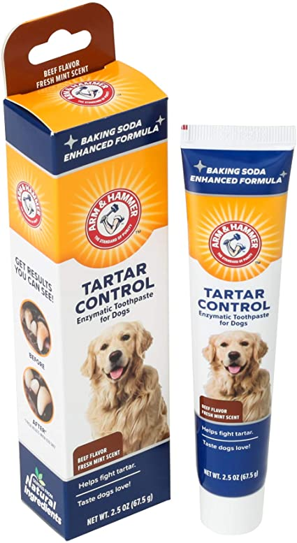 Arm & Hammer Tartar Control Enzymatic Toothpaste for Dogs