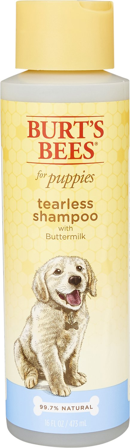 Burt's Bees Natural Pet Shampoo