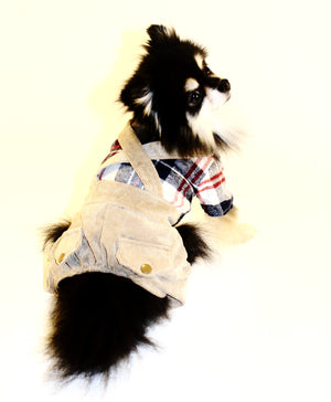 Dapper Dog - Plaid and Corduroy