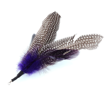 Feather Replacements