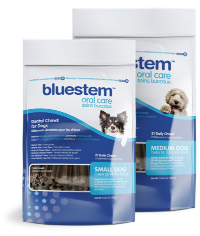 Bluestem Dental Chews - Daily Oral Care Chews with Coactiv+