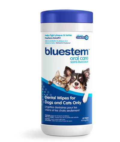 Bluestem Oral Care Wipes with Coactiv+ for Cats and Dogs