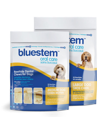 Bluestem Rawhide Dental Chews - Daily Oral Care Chews with Coactiv+