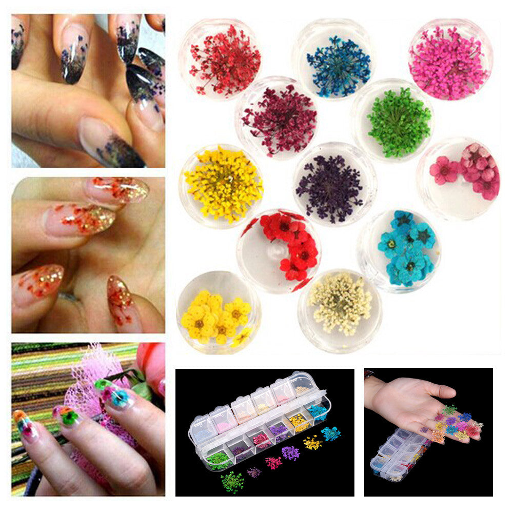 12 Colors Real Nail Dried Flower Nail Art Stickers Tips Decoration ...