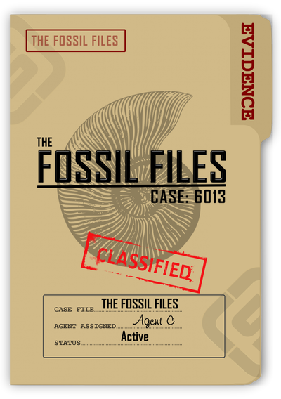 CASE 6013 THE FOSSIL FILES