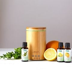 Shower Aromatherapy with oil Disfuser The Shower Head Store