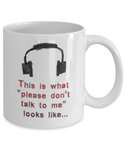 Please Don't Talk to Me Mug with Headphones