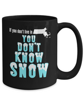Massachusetts Coffee Mug You Don't Know Snow