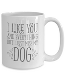 I Like You and Everything But I Just Miss My Dog Mug