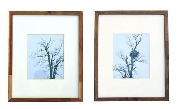 Eagle and Nest in Winter in Ontonagon, Michigan - Set of 2 Framed Photos