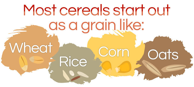Cereal-Grains-Infographic
