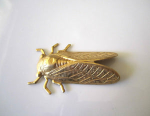 Raw Brass Stamped Cicada Brass Insect Findings Jewelry Supplies 50mm (1 pc) 126V8