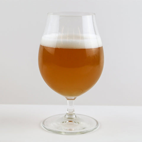 Tulip Craft Beer Glasses