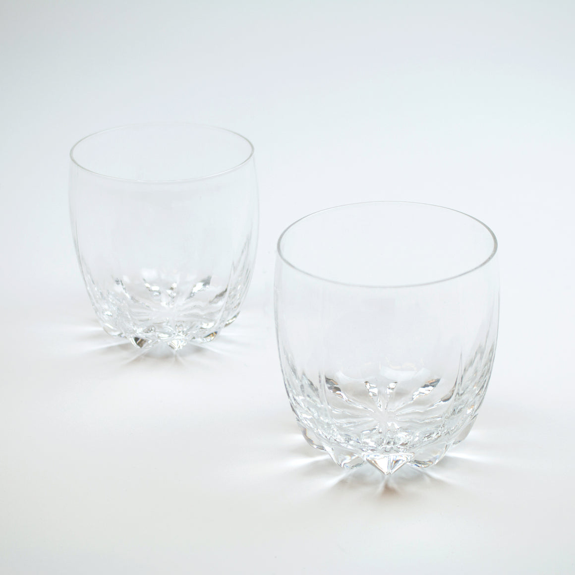 Crystal Cactus Tumbler (Set of 2)