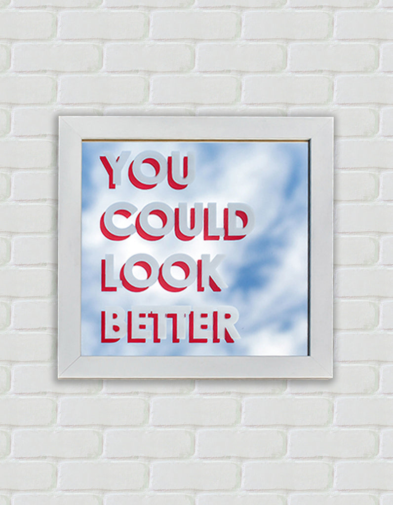 You Could Look Better (framed mirror) - ShangrilART