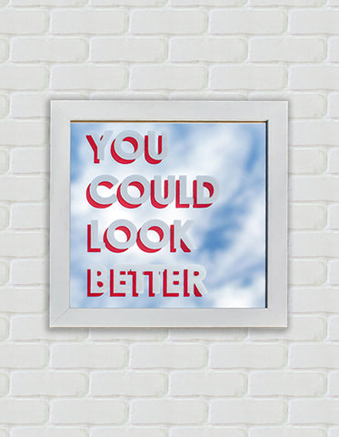You Could Look Better (Framed Mirror)