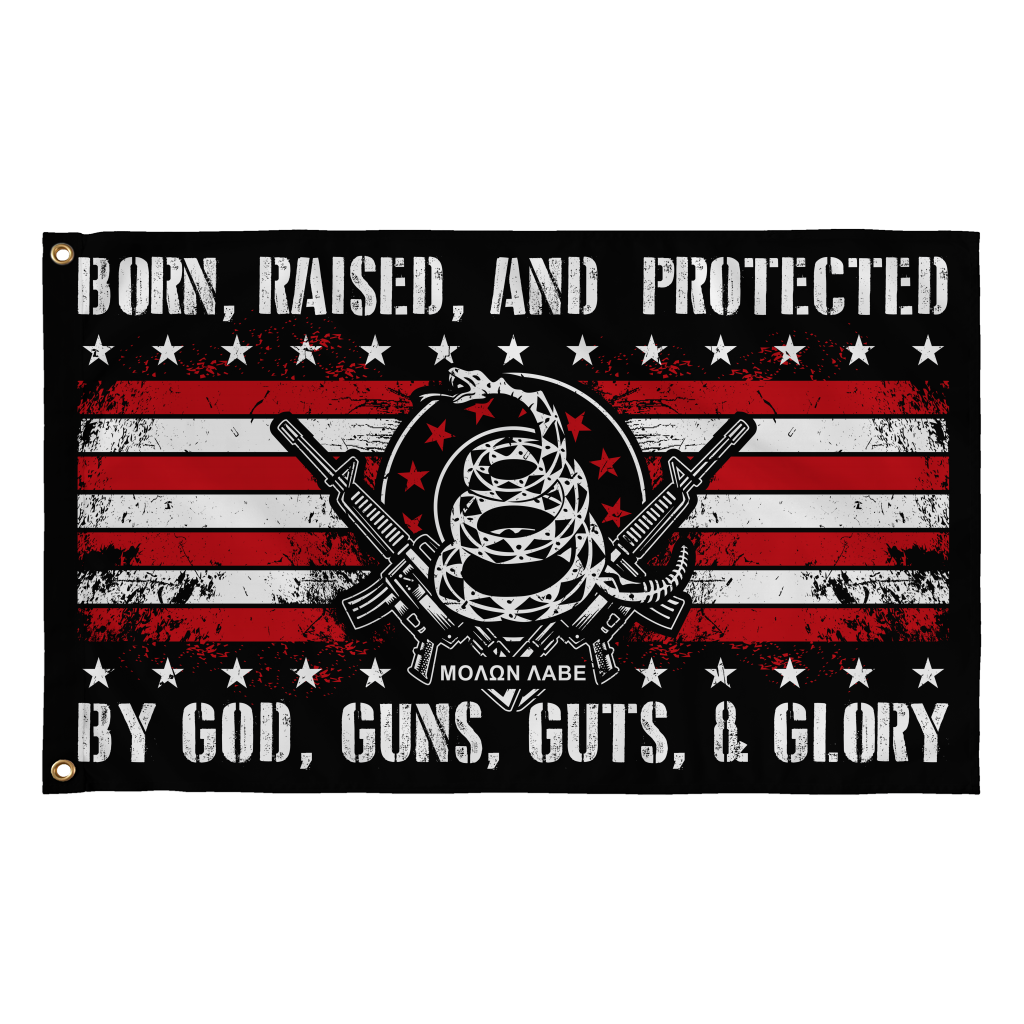 Protected by God, Guns, Guts & Glory! (Flag)