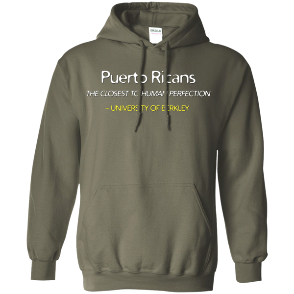 Human Perfection Pullover Hoodie 8 oz - PR FLAGS UP
