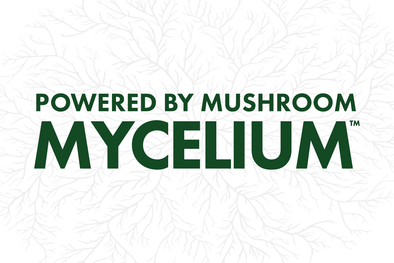 Why All Host Defense Supplements Are Powered by Mushroom Mycelium