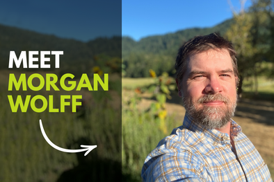 An interview with Morgan Wolff on growing mycelium and fruit bodies at Fungi Perfecti.