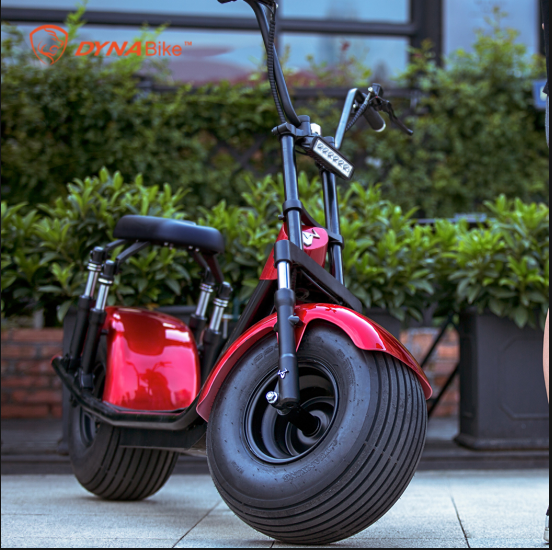 H4 Citycoco electric scooter