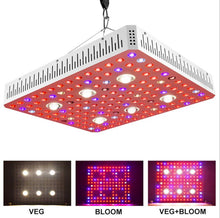 Full Spectrum 3000w LED Grow Light