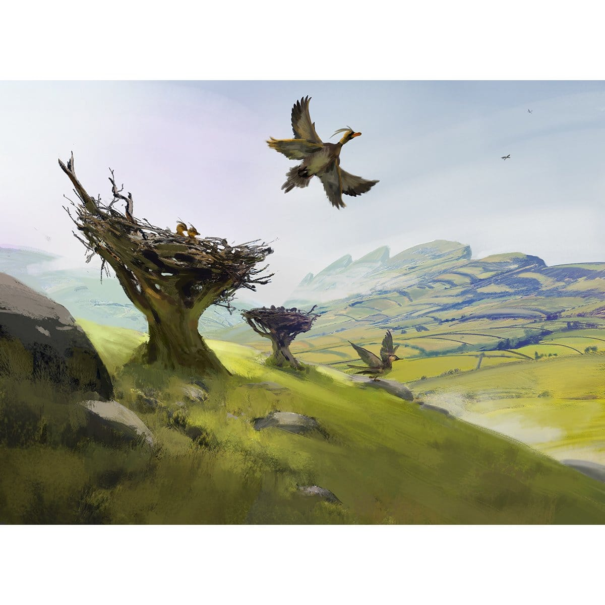 Feathered Friends Plains Print