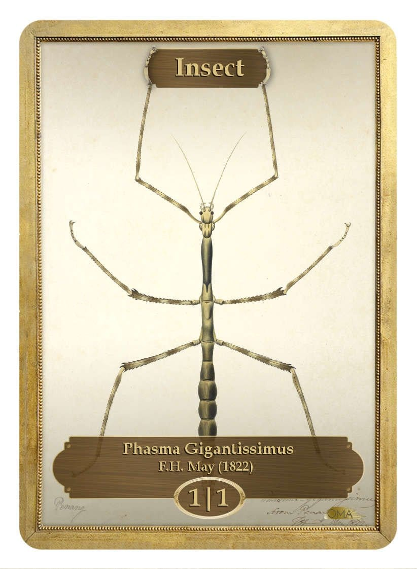 Insect Token (1/1) by F.H. May - Token - Original Magic Art - Accessories for Magic the Gathering and other card games