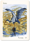 Bird Token (1/1) by Ken Meyer Jr.
