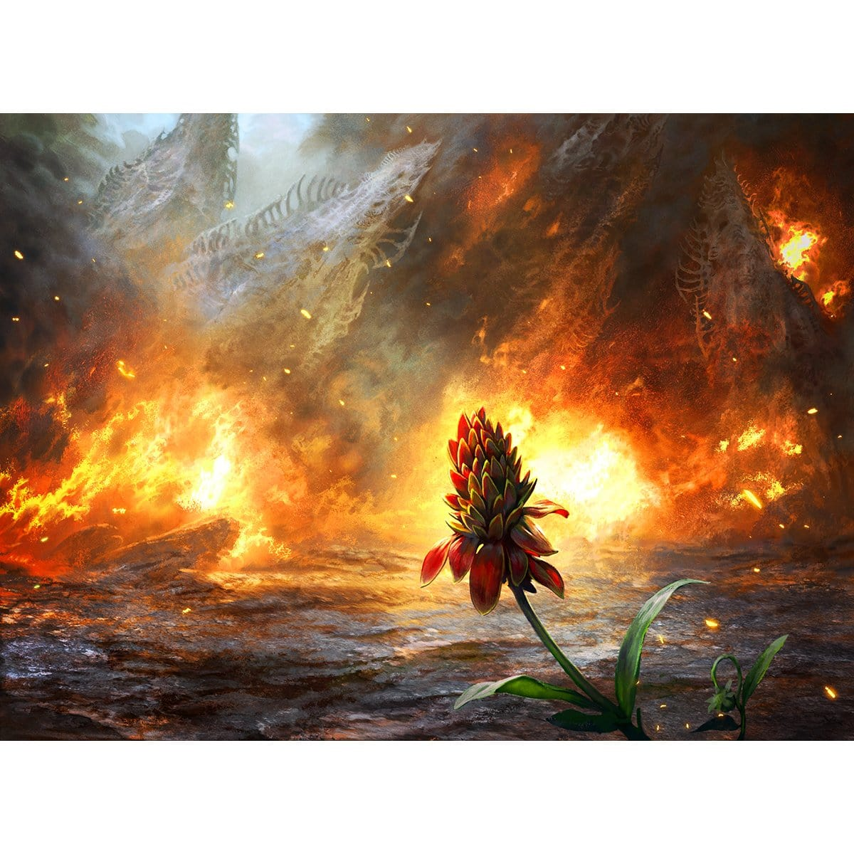 Cleansing Wildfire Print