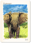 Elephant Token (3/3) by Ken Meyer Jr.