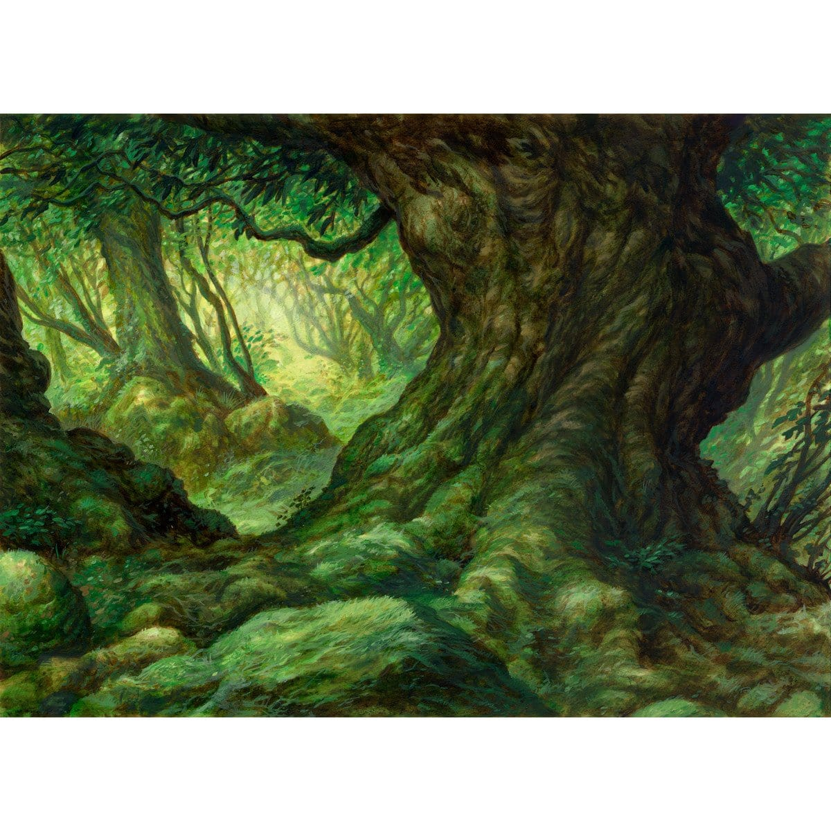 Forest Print - Print - Original Magic Art - Accessories for Magic the Gathering and other card games