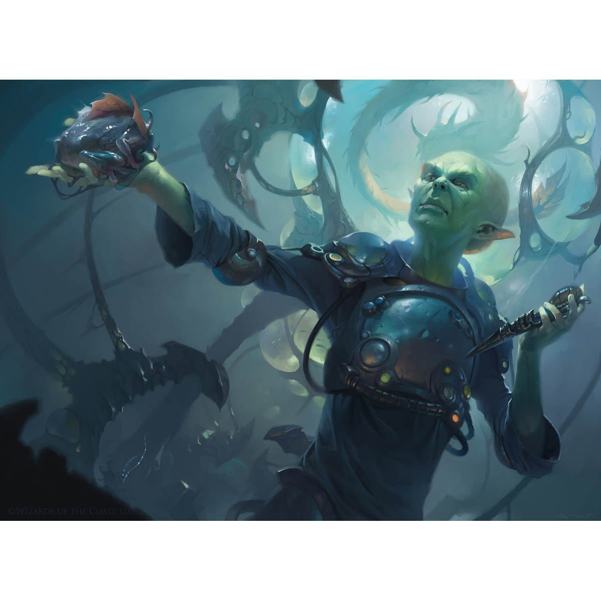 Momir Vig, Simic Visionary Print