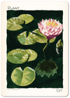 Plant Token (0/1) by Ken Meyer Jr. - Token - Original Magic Art - Accessories for Magic the Gathering and other card games