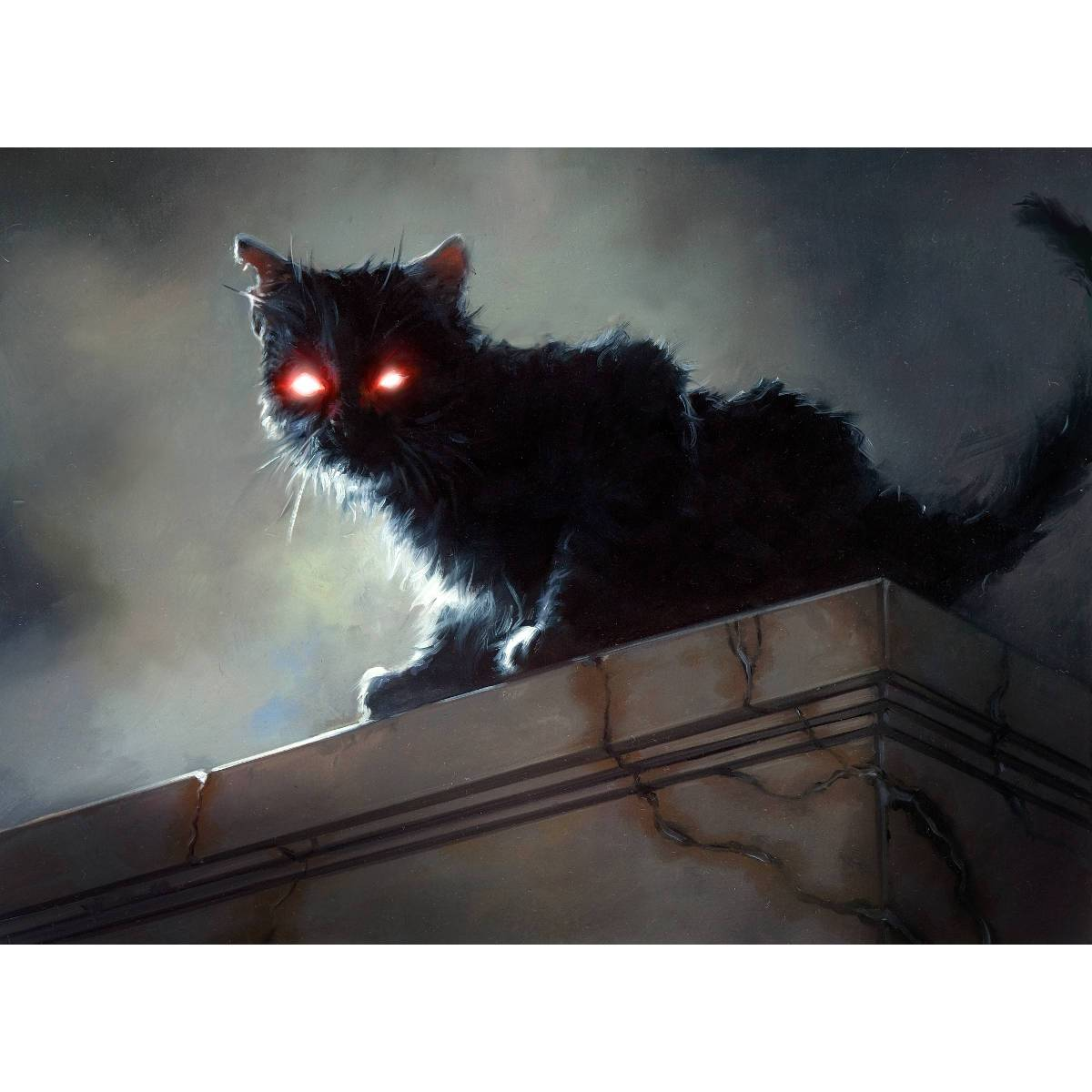 Black Cat Print - Print - Original Magic Art - Accessories for Magic the Gathering and other card games