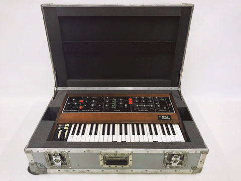 MiniMoog Model D Roadcase