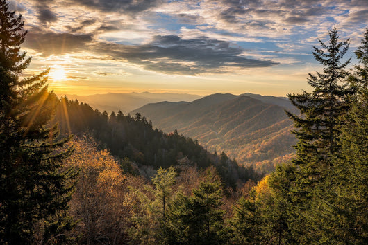Gratitude Adventure In Smoky Mountain National Park - Private Room For Single
