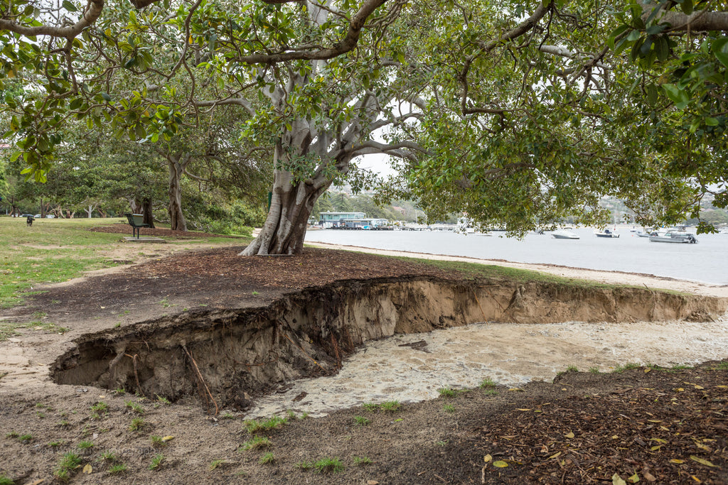 Storm Aftermath at Balmoral Beach