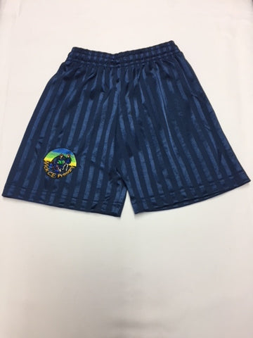 Navy Shorts (WICK)