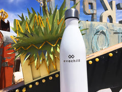 Stay hydrated at the Neon Museum in Las Vegas with an Evachill reusable bottle